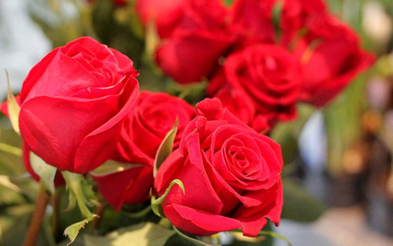 Valentine S Day Romantic Getaway Package