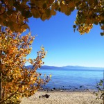 Aspens on the beaches of North Lake Tahoe are a beautiful frame for blue waters.