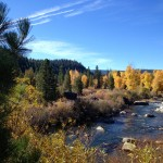 Truckee River in autumn, just days before our first predicted snowfall of 2012/13.