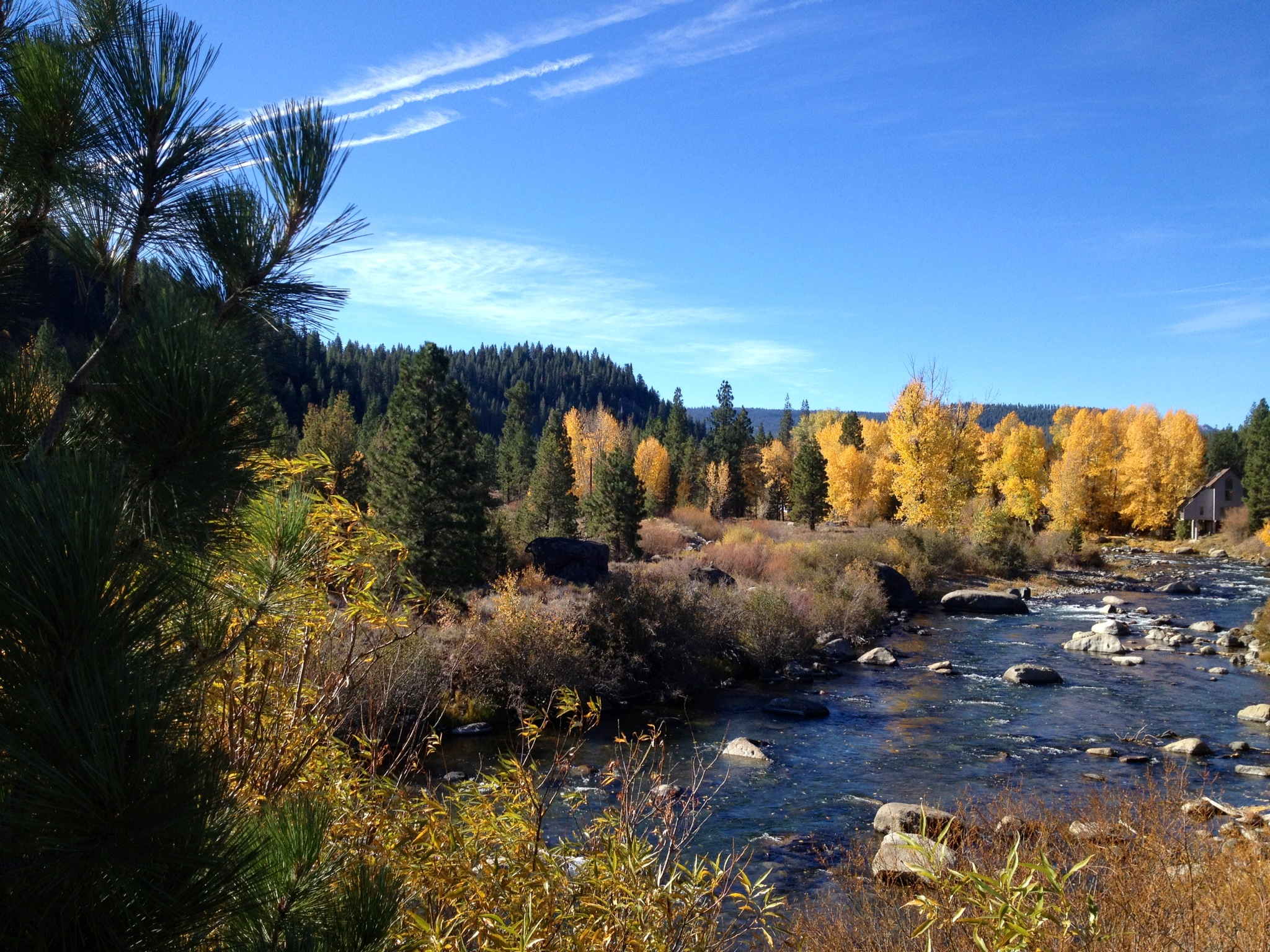 Truckee River: Fall