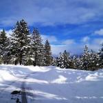 Old Greenwood Snow