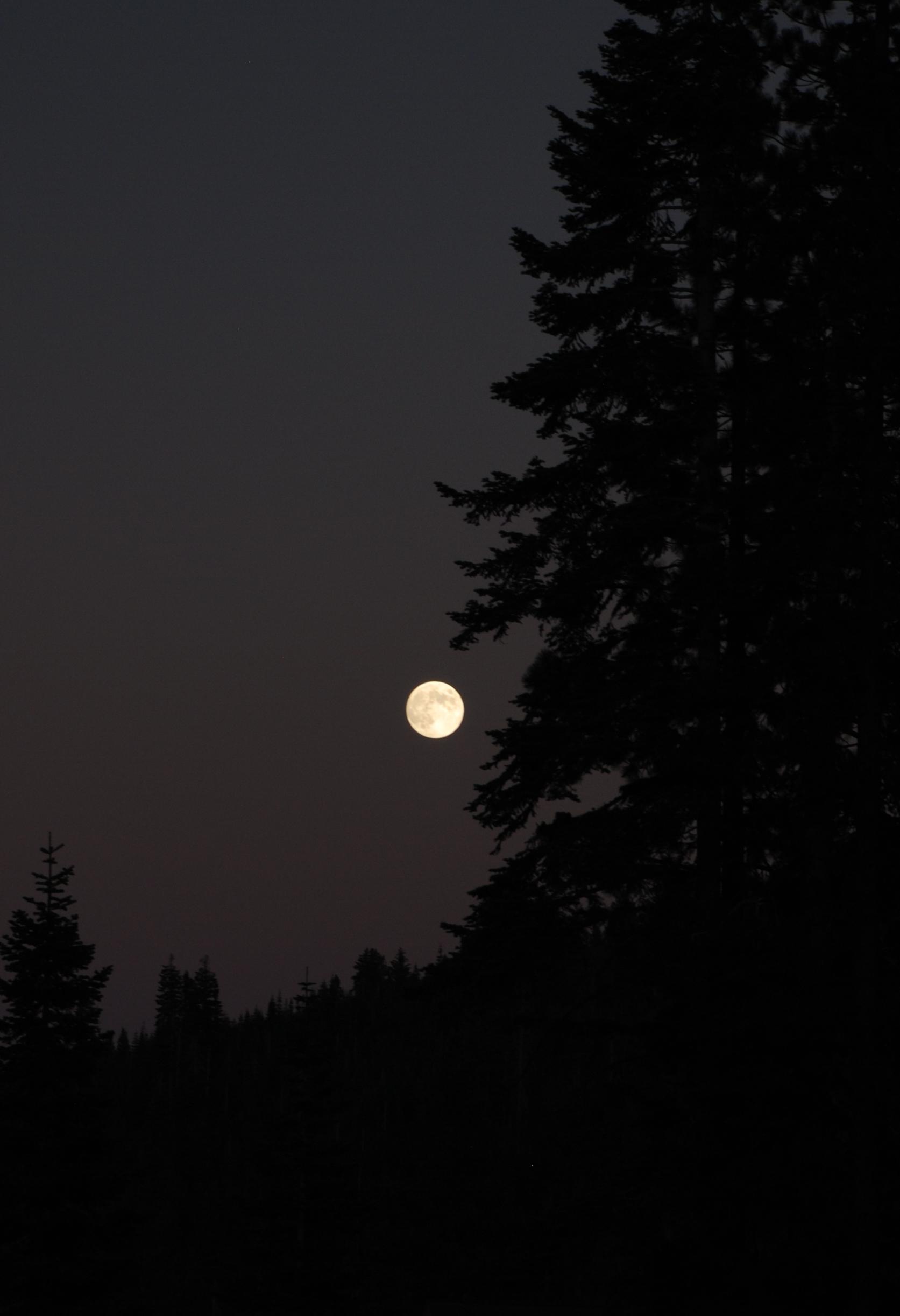 Full Moon Kayak Tours on Lake Tahoe